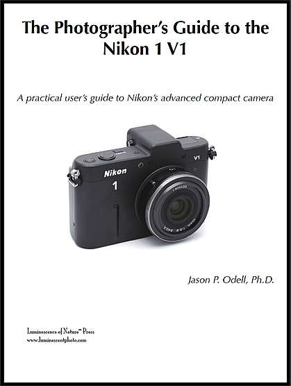 The Photographer's Guide to the Nikon 1 V1 (cover image)