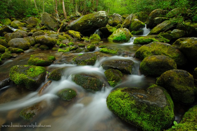 I used a Singh-Ray Vari-ND filter (variable) to get a 5s exposure on this stream in Great Smoky Mountains National Park. Variable filters are perfect for scenes where you just need to get a little slower but don't need intense filtration.