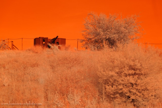 "A ""super-color"" D700 infrared image converted in Lightroom with default settings looks too orange."
