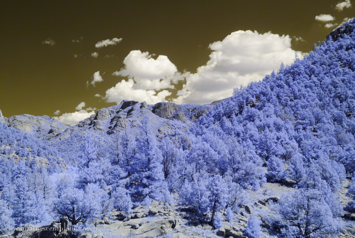 Super-color IR image after White Balance adjustment in Lightroom 5