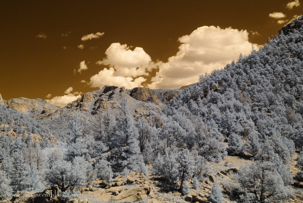 Super-color IR image with default Lightroom conversion