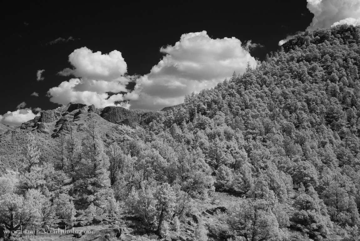 Infrared filtered image converted to monochrome in Lightroom 5 (no adjustments)