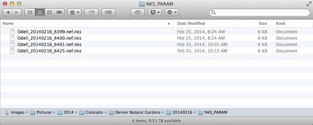 Not only are the Capture NX-D sidecar files stored in a separate directory, but they are a proprietary format!
