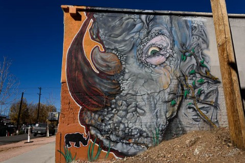 The RiNo Art District in Denver has lots of art if you know where to look for it.