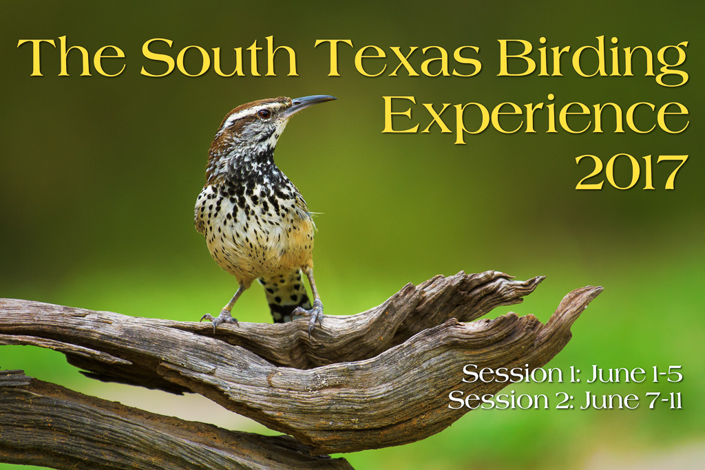 Join me in South Texas, June 2017