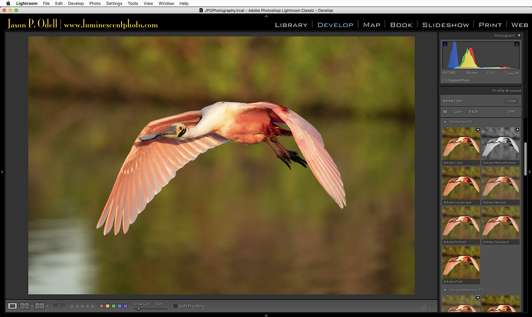 What's new in Lightroom Classic CC 7.3