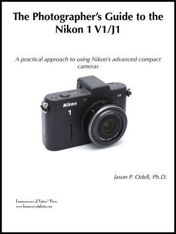 announcing the photographer s guide to the nikon 1 v1 j1 rh myemail constantcontact com User Guide Template Epson User's Guide